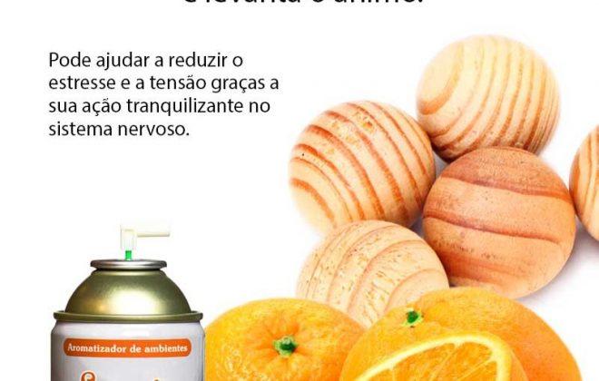 Aromatizador de ambiente citrico Tangerina e Cedro