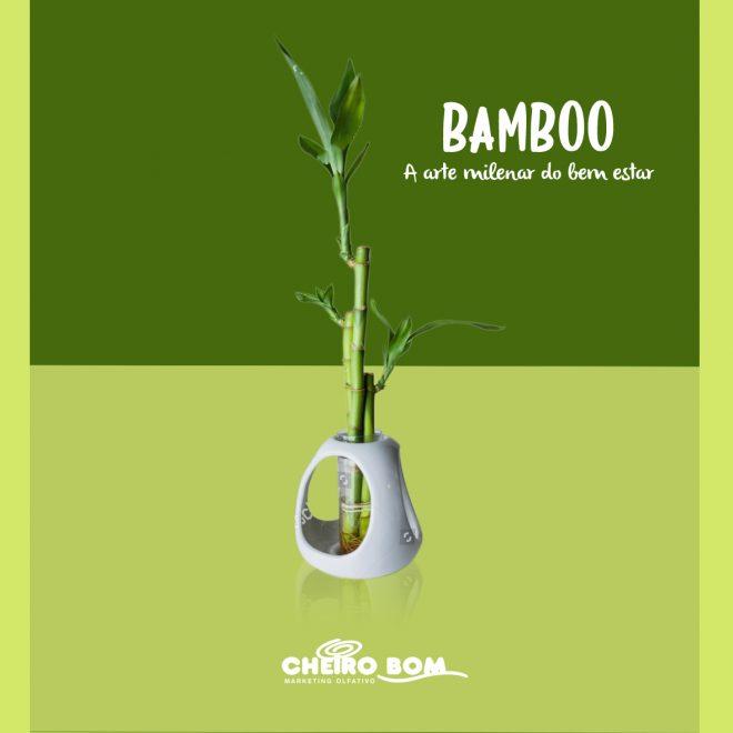 Fragrancias para Marketing Olfativo Cheiro Bom Bamboo