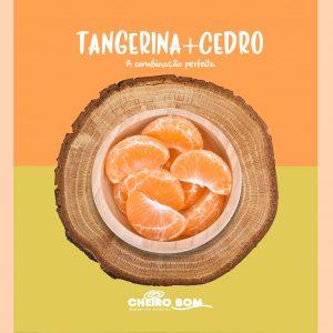 Aromatizador tangerina e cedro 1