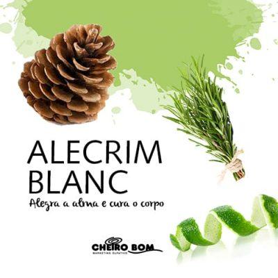 Aromatizador de Ambiente - Alecrim Blanc