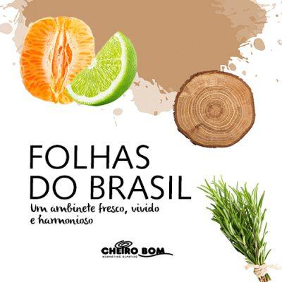 folhas do brasil-4