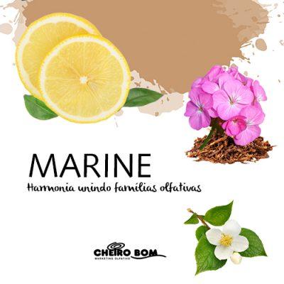 marine-4