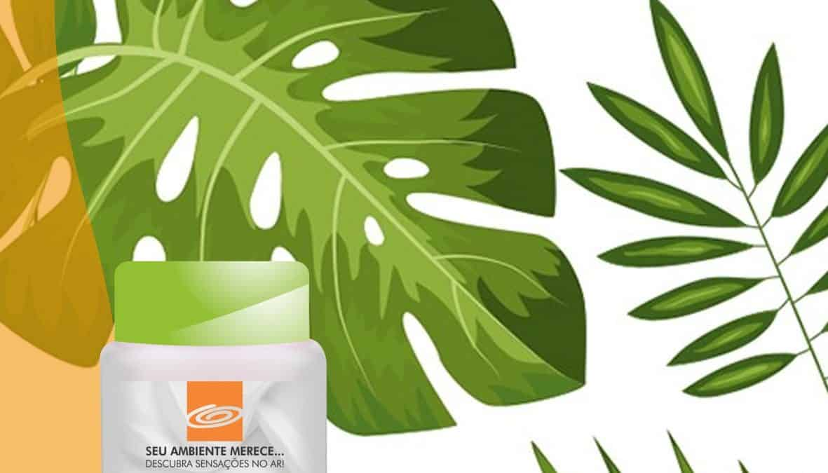 Fragrância Amadeirada - Folhas do Brasil