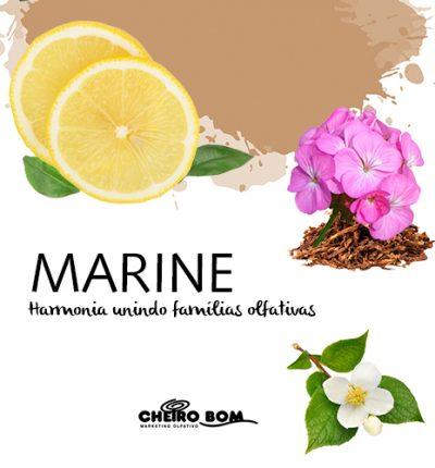 Aromatizador de ambiente - Marine