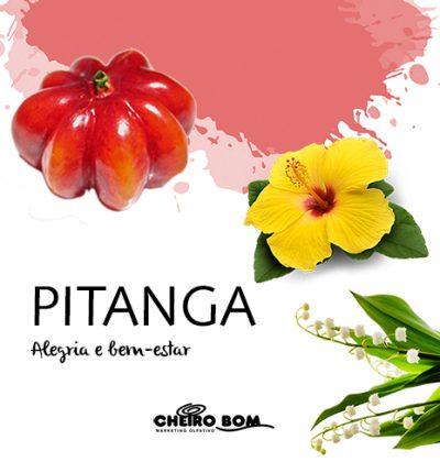 Aromatizador de Ambiente - Pitanga