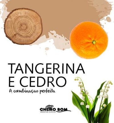 Aromatizador de Ambiente - Tangerina e Cedro